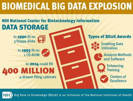 Big Data Developments within NIH
